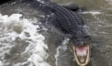 استجاب لنداء الطبيعة فعضّ مؤخرته .. تمساح