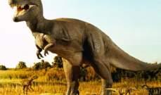 هل قضى ثوران بركاني على الديناصورات؟