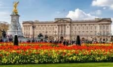 ما علاقة زهرة الكاميليا بـ قصر باكنغهام؟