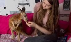 بالصور- فتاة تتعامل مع الحيوانات بطبيعية وكأنها تتحدث إلى إنسان