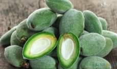 اللوز الأخضر.. طعمه لذيذ وفوائده مذهلة على الصحة وإنقاص الوزن
