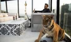 بالصور- طارق فريتخ يربي نمراً في منزله... وحارسه يقف بالمرصاد