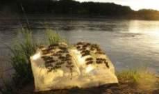 كتب من الجليد مع صور ونصوص !