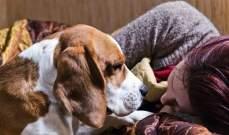 دراسة تكشف وجود علاقة هرمونية بين الكلاب الأليفة وأصحابها