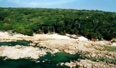 جزيرة مذهلة بطبيعتها ولكن السياح لا يجرؤون على الاقتراب منها.. بالصور