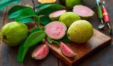 فوائد أوراق الجوافة مذهلة في مكافحة الأمراض وإنقاص الوزن