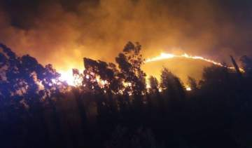 النجوم يدقون ناقوس الخطر بعد الحرائق: الله يحمي لبنان
