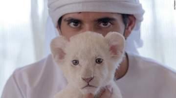 حظر إقتناء الحيوانات المفترسة على أنها أليفة في الإمارات