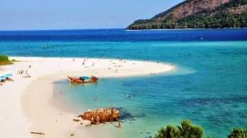 أحد شواطئ تايلاند يتعرض لغزو آلاف سرطانات البحر-بالفيديو