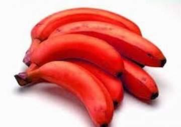 الموز الأحمر.. فاكهة نادرة جداً وفوائدها لا تحصى للصحة والجمال