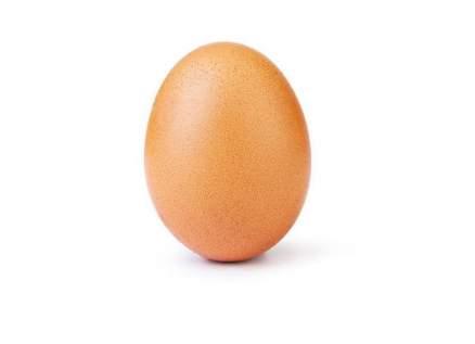 بيضة تتفوق على كايلي جينر وجينيفر أنيستون وسيلينا غوميز
