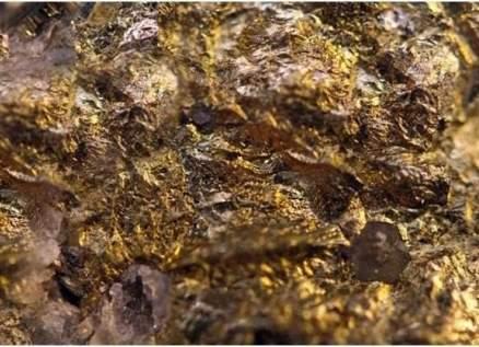 العثور على جبل من ذهب.. وأعداد هائلة من الباحثين عليه - بالفيديو