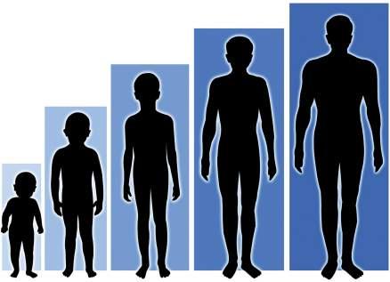 إذا كنت بهذا الطول فأنت معرض أكثر من غيرك للإصابة بـ فيروس كورونا!!