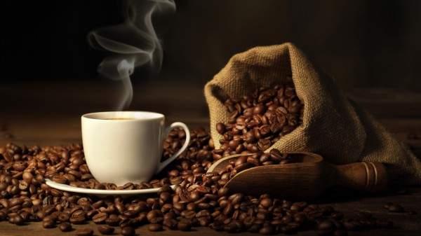 أغلى أنواع القهوة في العالم تصنع من البراز بالصور
