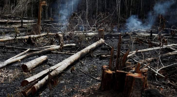 خبر إعتزال إليسا أقام الدنيا ولم يقعدها..وحريق الأمازون لم يحرك ساكناً!