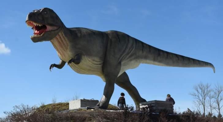 العثور على بيض ديناصور نادر في الصين- بالصورة
