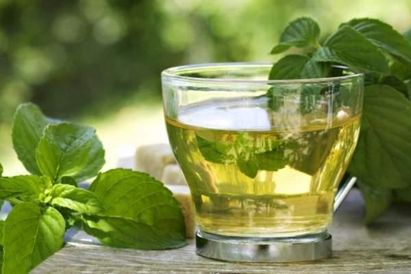 الشاي الأخضر بالنعناع يساعد على تخفيف الوزن ويزيد مناعة الجسم