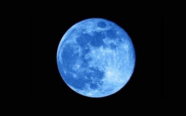 ميلياردير يبحث عن شريكة ترافقه إلى القمر وهذه المواصفات- بالصور