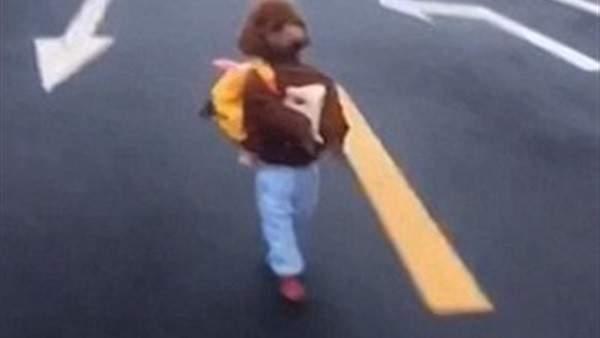 """كلب يمشي على طريقة البشر ويدخل """"غينيس""""..بالصورة"""