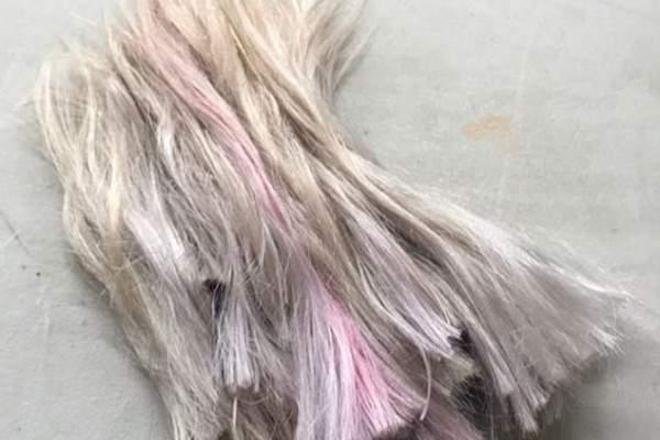 كارا ديليفيني بلوك شعر جديد