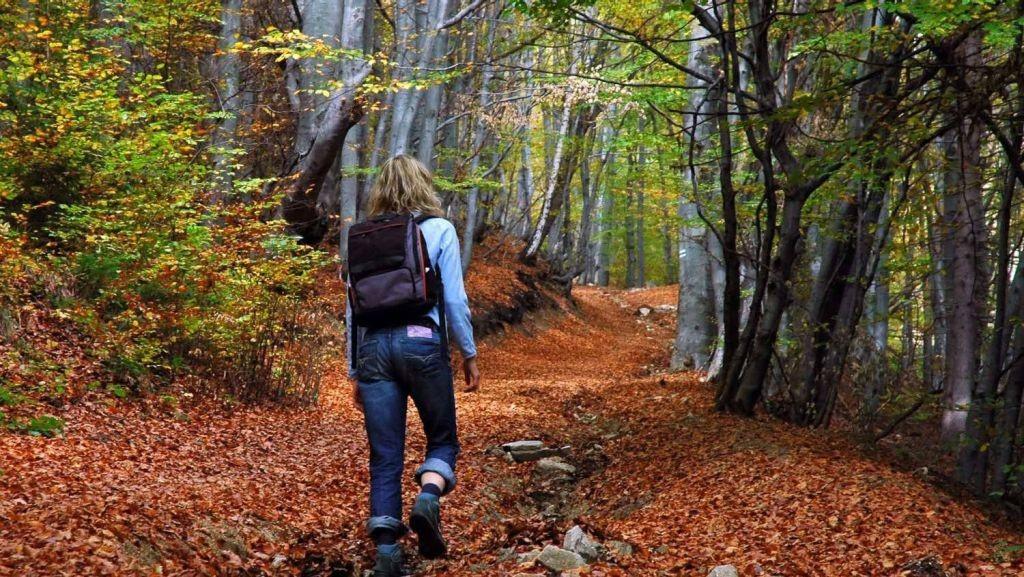 المشي في الطبيعة يقضي على التوتر والتعب