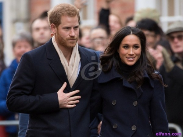الأمير هاري وميغان ماركل يدخلان موسوعة غينيس